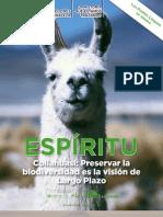 Revista Espiritu 45