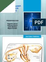 Presentacion Final de Patologia