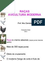RAÇAS Aves_aula3