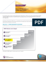 Psd Cmmi Fact Sheet