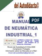 Neumatica Industrial 1