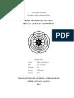 Jurnal Domestic Case Study 2012