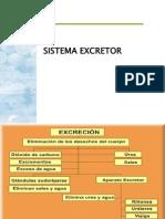 Siste.excretor2011