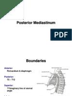 Posterior Mediastinum E-learning