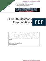 Lei 8.987 Desmontado PDF