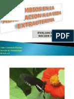 cambiosenlaadaptacionalavidaextrauterina