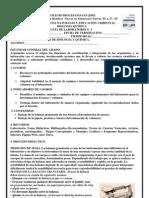 LABORATORIO3[1]