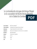 Proyecto Contaminacion Arroyo Pirayui