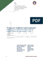Grupo No. 2-Normas de Auditoria Gubernamental-GAO-2