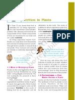 Science_nutrition in Plants