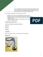 Exploración Física del Paciente