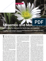 Mesembs and Molecules