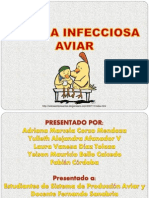 Anemia Infecciosa Aviar. Alejandra Afanador