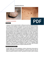 Ejercicio de diagnóstico diferencial N°14 (R)