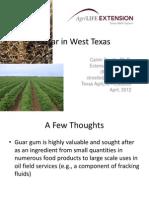 Guar West Texas 2012
