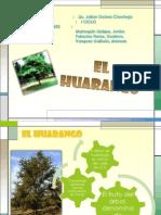 El Huarango
