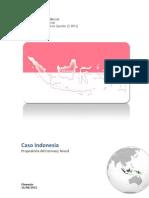 Caso Indonesia