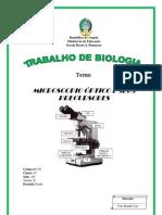 CAPA Microscopio Optico