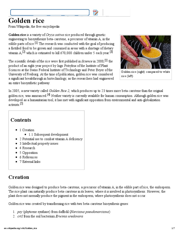 Genetic engineering wikipedia - Golden Rice Wikipedia The Free Encyclopedia Vitamin A Food Wine