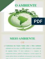 Meio Ambiente II