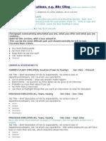 CV Template 9