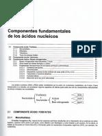 0-1tema 2 Componentes Fundamentales de Los Acidos Nucleicos