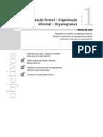 17417 Estrutura e Processos Organizacionais Aula 01 Volume 01