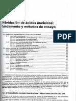 0-1tema 13 Hibridacion de Acidos Nucleicos, Fundamento y Metodos de Ensayo
