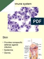 Immune System[1]