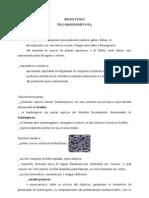 Apostila Basidiomycetos
