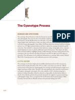 Cyano Type Process Sm