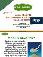 Halal Gelatin by Mohamad Yakob Bin Munshi Deen