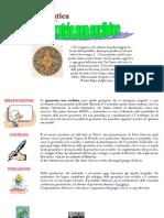 Webquest Storia - Geometrie Non Euclidee