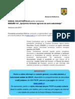 Ghid Masura 141- iunie 2012