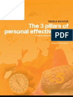 The 3 Pillars of Personal Effectiveness by Troels Richter
