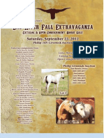 Bad River Extravaganza Horse Sale