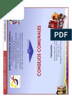 CONSEJOS COMUNALESvs1