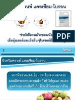 Calcium Boron (Thai19.8.12)
