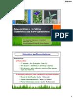 Pratica - Sistematica Monocotiledoneas