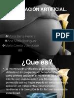 INSEMINACIÓN ARTIFICIAL2 GRAN PDF