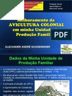 Proj Avicultura Colonial na UPF - Alexander A. S..pdf
