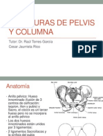 Fracturas de Pelvis y Columna