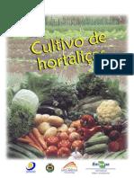 Projeto Horta Solidária - Cultivo de Hortaliças
