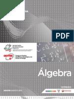 Algebra GUIAS FORMATIVAS B/P Agosto 2012
