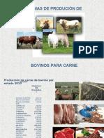 Sistema de Produccion de Bovinos