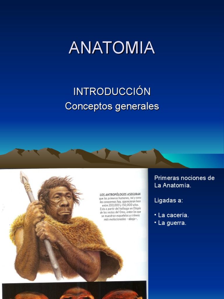 Copia de curso de anatomía
