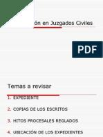 Clínicas Jurídicas UDP procedimiento civil y gestión en tribunales
