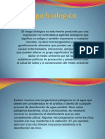 Diapositiva Riesgo Biologico