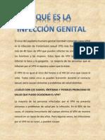 El Virus Del Papiloma Humano Genital