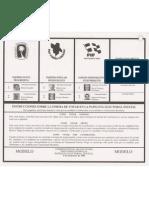 Papeleta Estatal - Elecciones 1996